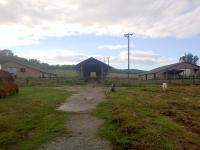 Recske eladó mezõgazdasági terület 79ha tanya legelõ és szántó ingatlan hirdetéshez feltöltött kép