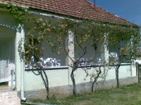 Mátraderecske eladó családi ház 55m2 2 szoba 937m2 telek parasztház ingatlan hirdetéshez feltöltött kép